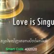 Love Is Singular